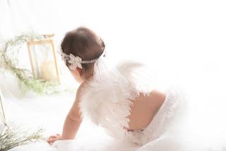 image_6483441-2.JPG